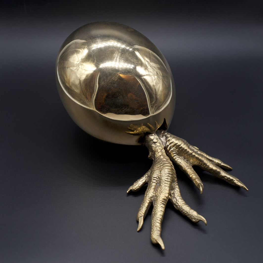 the human egg